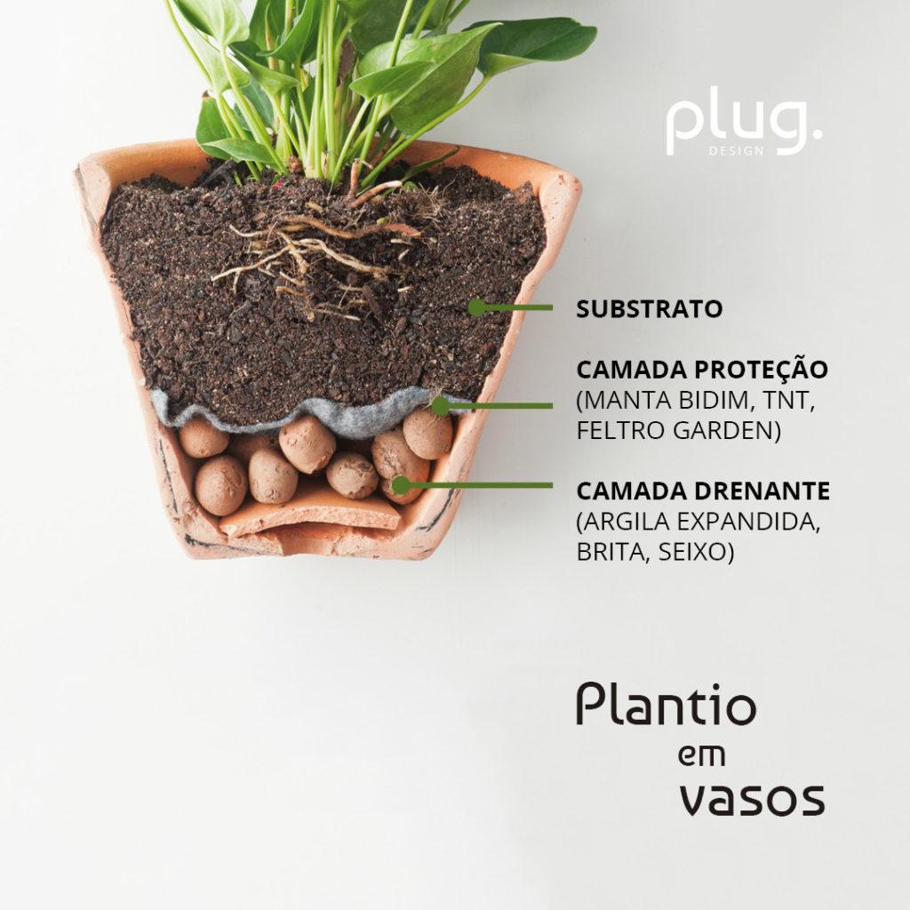 vaso e substrato