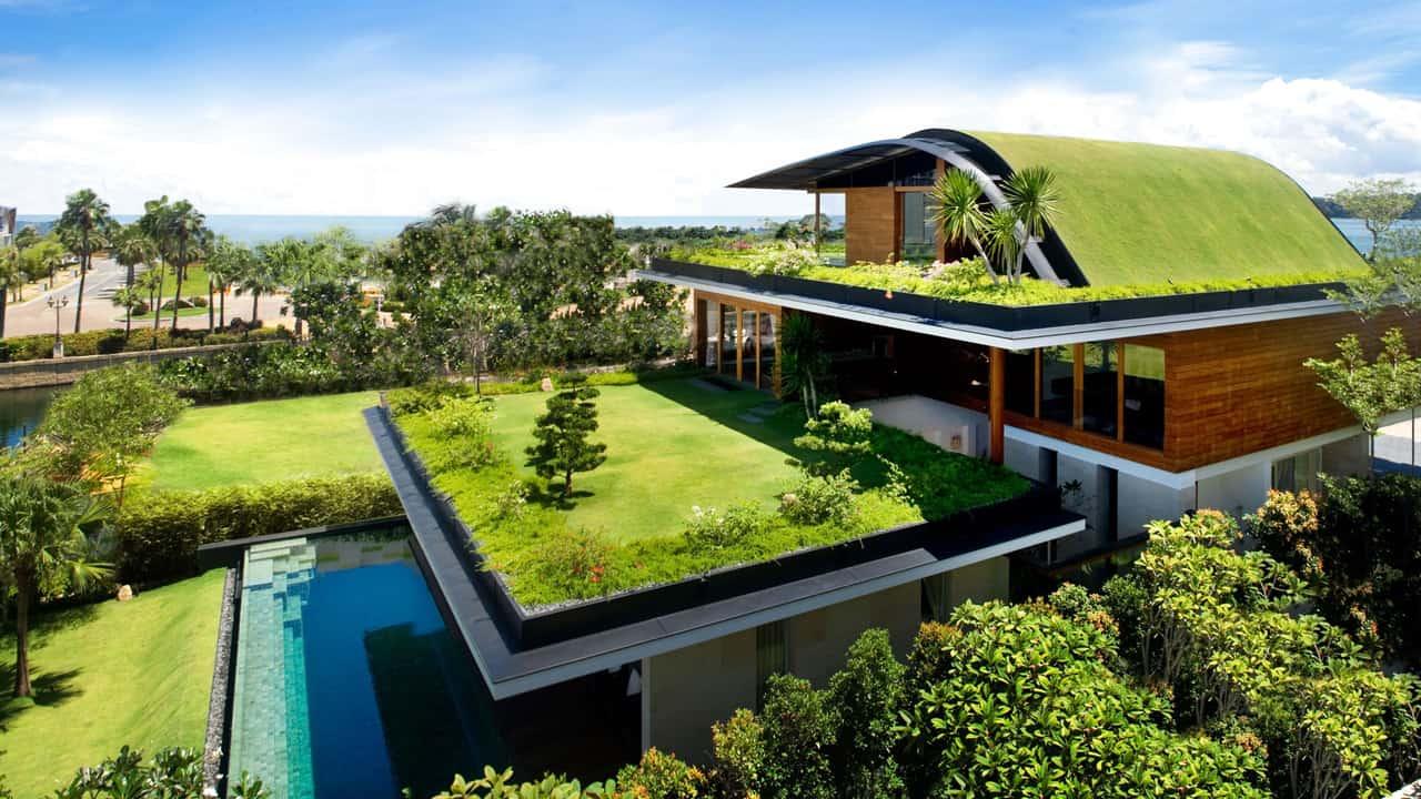 As coberturas naturais fazem parte das práticas da sustentabilidade na construção civil.