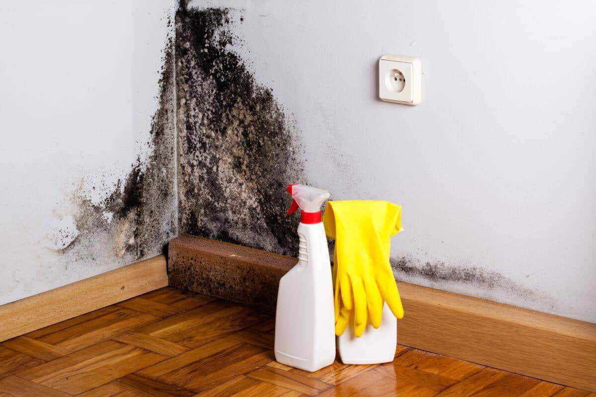 As superfícies devem estar limpas para receber a massa acrílica.