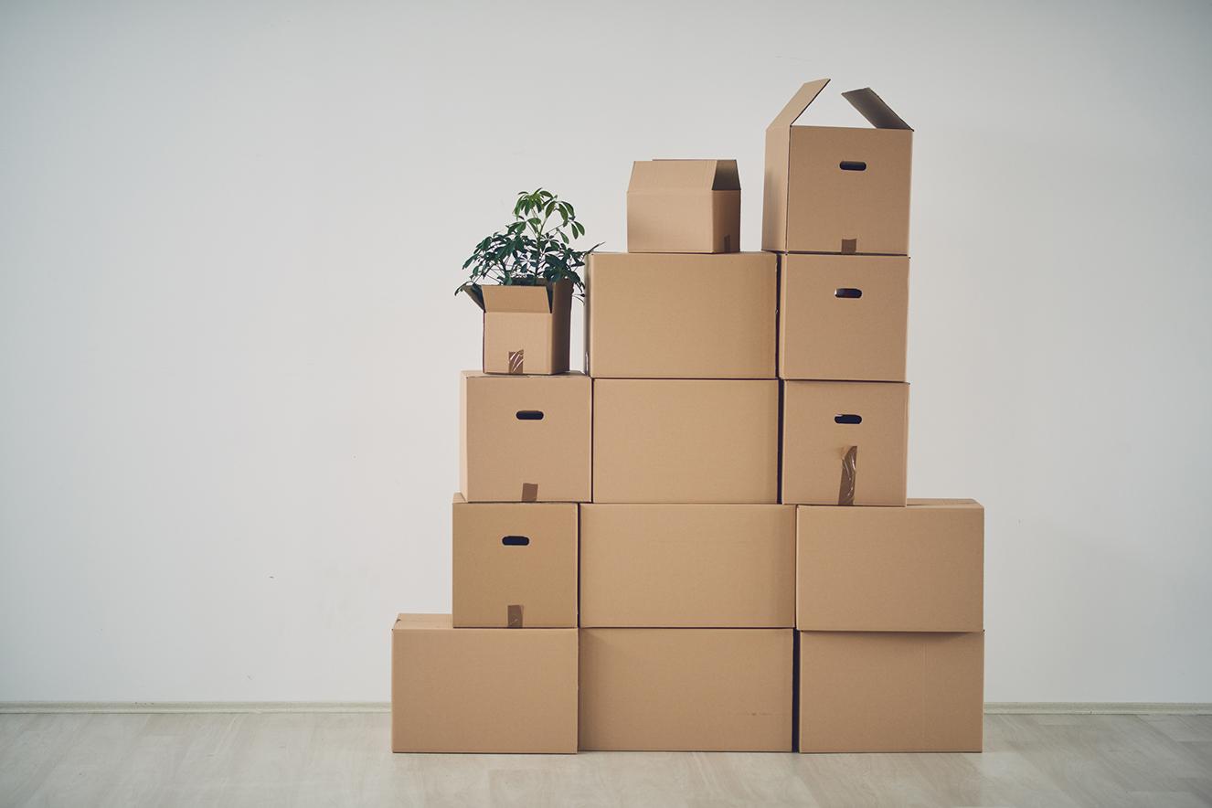 caixas de papelão para sua mudança