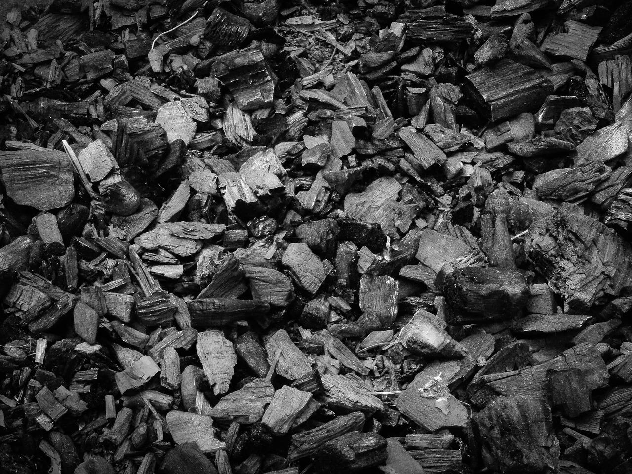 como plantar orquídea no carvão: carvão vegetal