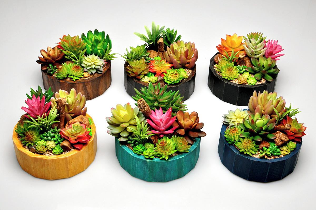 Espécies de suculentas plantadas em tocos de madeira pintados.