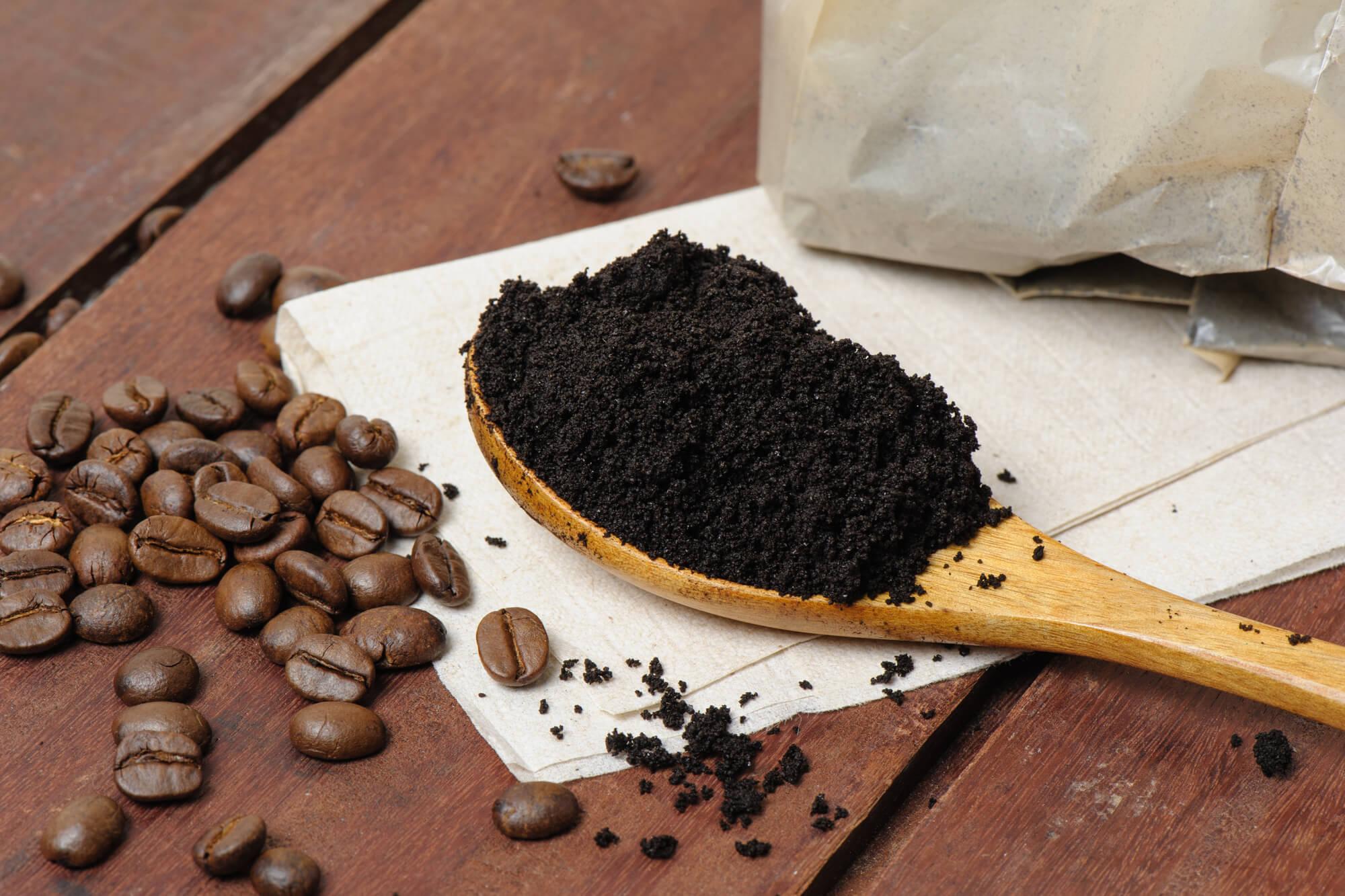 A borra de café nas orquídeas é uma excelente opção de fertilizante.