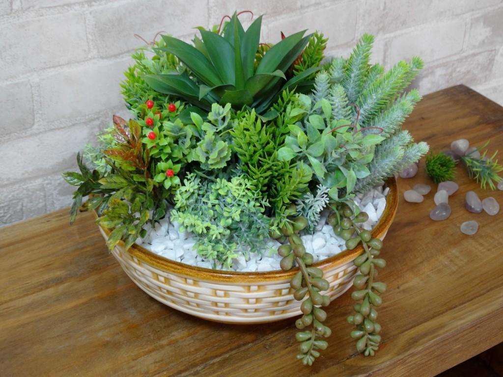 plantas para dentro de casa suculentas