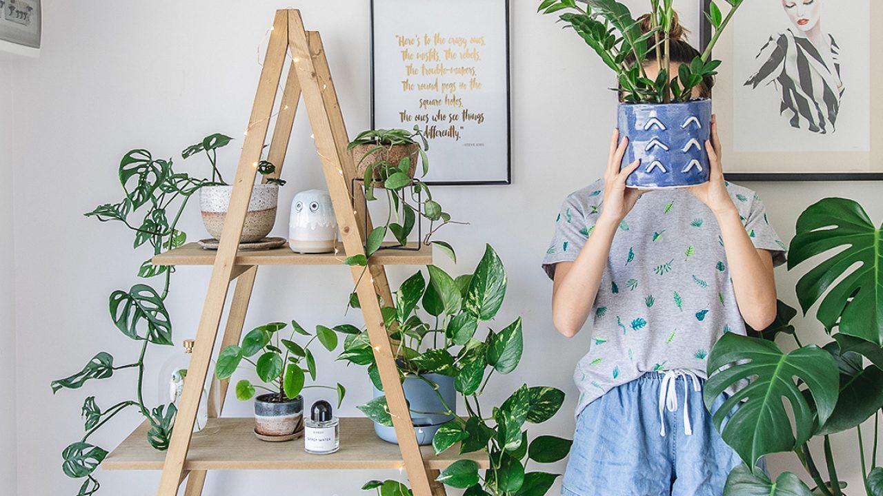 mulher segurando vaso de plantas para dentro de casa