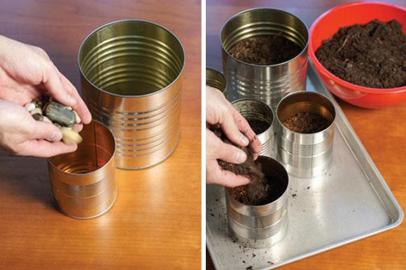 latas decoradas plantando